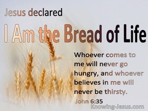 John 6:35 I Am The Bread Of Life Whoever Comes To Me Will Never Hinger Or Thirst  (gray)