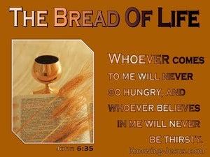 John 6:35 I am the bread of life (orange)