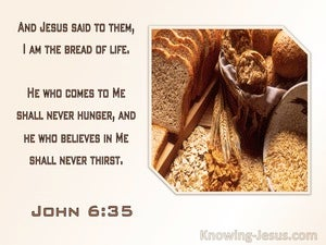 John 6:35 Jesus Said I Am The Bread Of Life, He Who Come Will Never Hunger (pink)