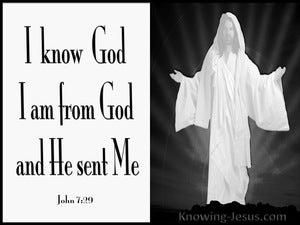 John 7:29 I Am Sent From God (white)