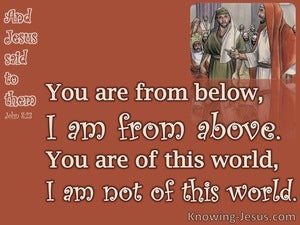 John 8:23 You Are From Below I Am From Above (brown)