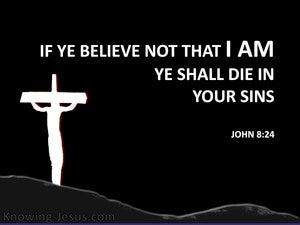 John 8:24 If Ye Believe Not Ye Shall Die in Your Sins (black)