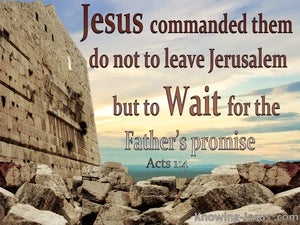 Acts 1:4 Do Not Leave Jerusalem But Wait red