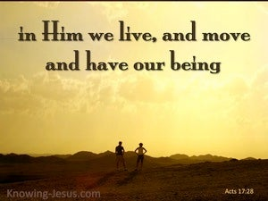 Acts 17:28 In Him We Live And Move yellow