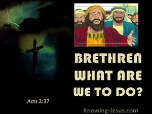 Acts 2:37 Bretheren What Are We To Do (yellow)