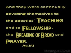 Acts 2:42 Devoted To The Apostles Teaching green