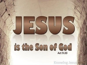 Acts 9:20 He Is The Son Of God brown