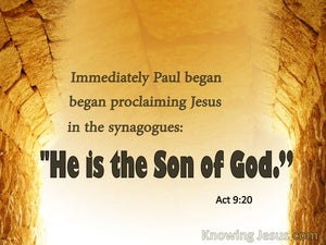 Acts 9:20 He Is The Son Of God white