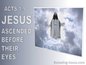 Acts 1:9 He Ascended Before Their Eyes (gray)