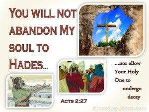 Acts 2:27 You Will Not Abandon My Soul To Hades (red)