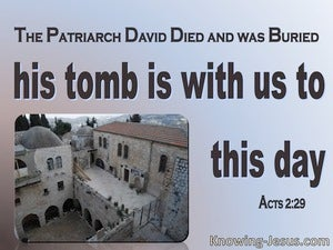 Acts 2:29 David's Tomb Is With Us To This Day (pink)