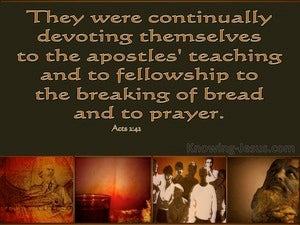 Acts 2:42 Devoted To The Apostles Teaching (brown)