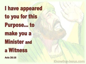 Acts 26:16 I Appeared For This Purpose To Make You A Minister And A Witness (yellow)