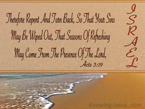 Acts 3:19 Repent So Your Sins Are Wiped Out (brown)
