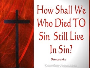 Dead To Sin (devotional) - Romans 6:2