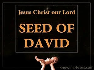Romans 1:3 Made of the Seed of David orange