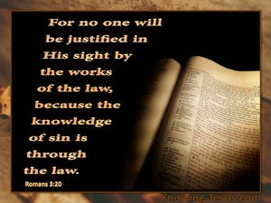 Romans 3:20 Knowledge of Sin is Through the Law orange
