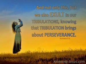 Romans 5:3 Exult In Sufffering Which Brings Perseverance (yellow)