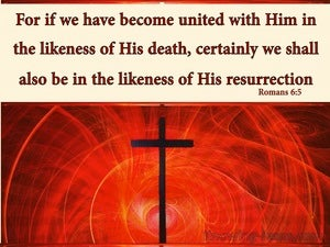 Romans 6:5 United With Him In The Likeness Of His Death (cream)