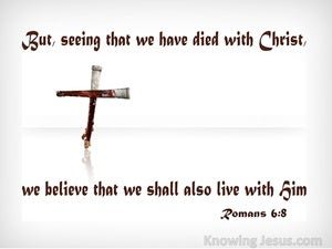 Romans 6:8 We Died With Christ And Shall Live With Him (white)