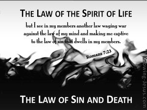 Romans 7:23 The Law Of Sin And Death gray