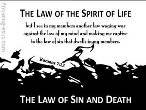Romans 7:23 The Law Of  The Spirit Of Life black