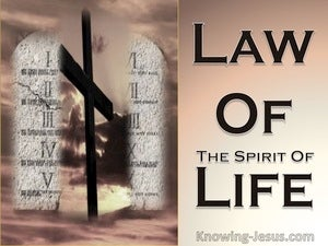 Romans 8:2 The Law Of The Spirit Of Life beige