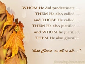 Romans 8:30 Predestined Called Justified Glorified orange