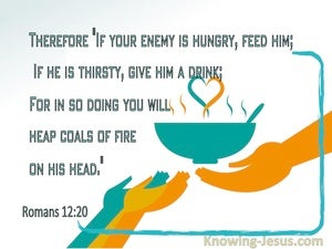 Romans 12:20 If Your Enemy Is Hungry, Feed Him (aqua)