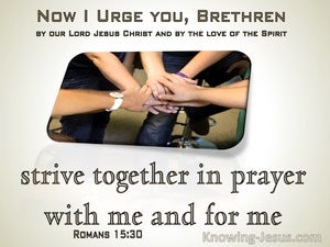 Romans 15:30 Strive With Me In Prayer To God (sage)