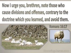 Romans 16:17 Note Those Who Cause Division Contrary To Doctrine (brown)