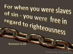 Romans 6:20 Slaved Of Sin (brown)