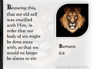 Romans 6:6 Our Old Man Is Crucified With Him (white)