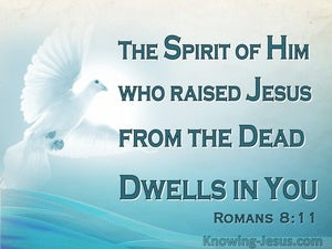 Romans 8:11 He Who Raised Christ Dwells In You (aqua)
