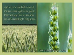 Romans 8:28 All Things Work Together For Good (yellow)