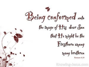 Romans 8:29 Conformed Into The Image Of Christ (maroon)