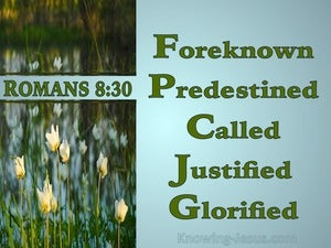 Romans 8:30 Foreknown Predestined Called Justified Glorified (blue)