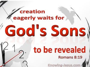 Romans 8:19 All Creation Waits For God's Sons To Be Revealed (white)