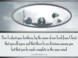 1 Corinthians 1:10 Let There Be No Division Among You gray