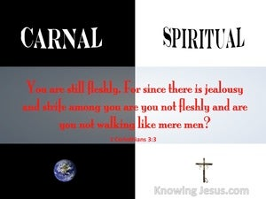 1 Corinthians 3:3 Are You Not Still Carnal red