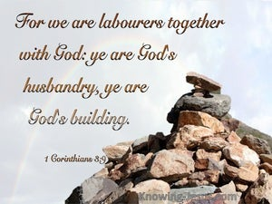 1 Corinthians 3:9 We Are God's Building brown