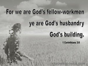 1 Corinthians 3:9 We Are Gods Building gray