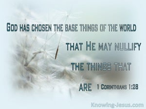 1 Corinthians 1:28 The Things Which Are Despised God Has Chosen (white)