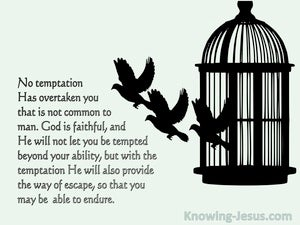 1 Corinthians 10:13 No Temptation Has Overtaken You That Is Not Common To Man (green) bible