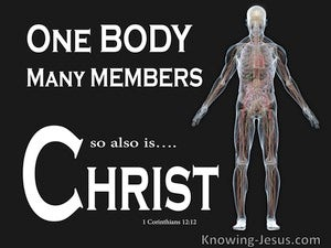 1 Corinthians 12:12 One Body Many Members So Also Christ (white)