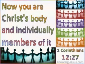 1 Corinthians 12:27 You Are Christ's Body (white)