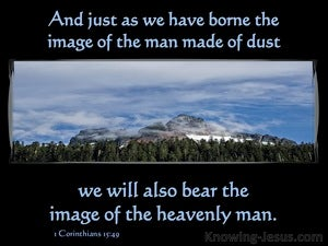 1 Corinthians 15:49 We Bear The Image Of The Heavenly Man (black)