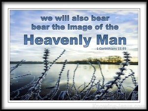 1 Corinthians 15:49 We Bear The Image Of The Heavenly Man (blue)