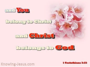 1 Corinthians 3:23 You Belong To Christ (pink)