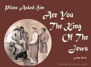 John 18:33 Pilate Asked Him Are You The King Of The Jews (beige)